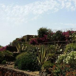 Giardino dell'Hotel Suvaki